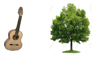 Plant tree for each guitar sold